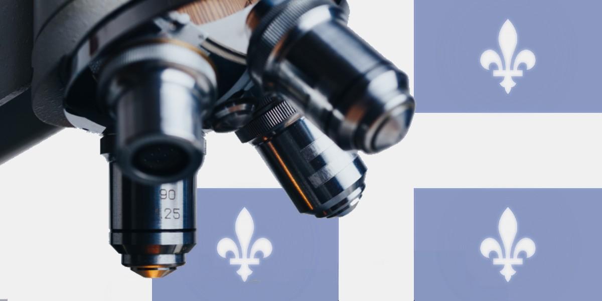 La recherche en français : un bilan préoccupant